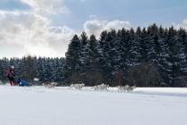 Gebremst, Deutschland, 10.02.2013 © by akkifoto.de