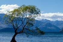 Lake Wanaka lookout, NZL, 28.05.2005 © by akkifoto.de
