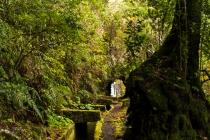 Levada Do Norte, Madeira, 2013 © by akkifoto.de