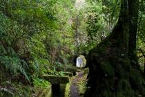 Levada Do Norte, Madeira, 02.03.2013 © by akkifoto.de