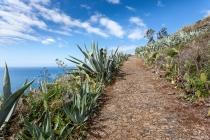 Aufstieg nach Fajã Da Ovelha, Madeira, 2013 © by akkifoto.de