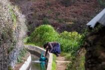 Gartenarbeit, Levada Nova, Madeira, 2013 © by akkifoto.de