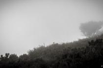 Wolken um Bica da Cana, Madeira, 2013 © by akkifoto.de