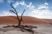 Tall One, Dead Vlei, Hardap, 19.10.2013 © by akkifoto.de