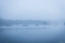 Lough Leane, Killarney-Nationalpark, Munster, 14.10.2014 © by akkifoto.de